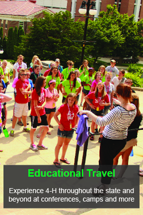 Educational Travel Opportunities