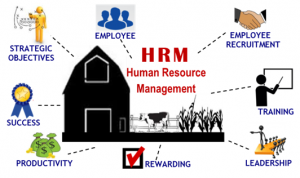 hrm-in-ag-logo