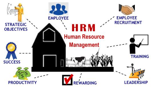 human resource management at work pdf