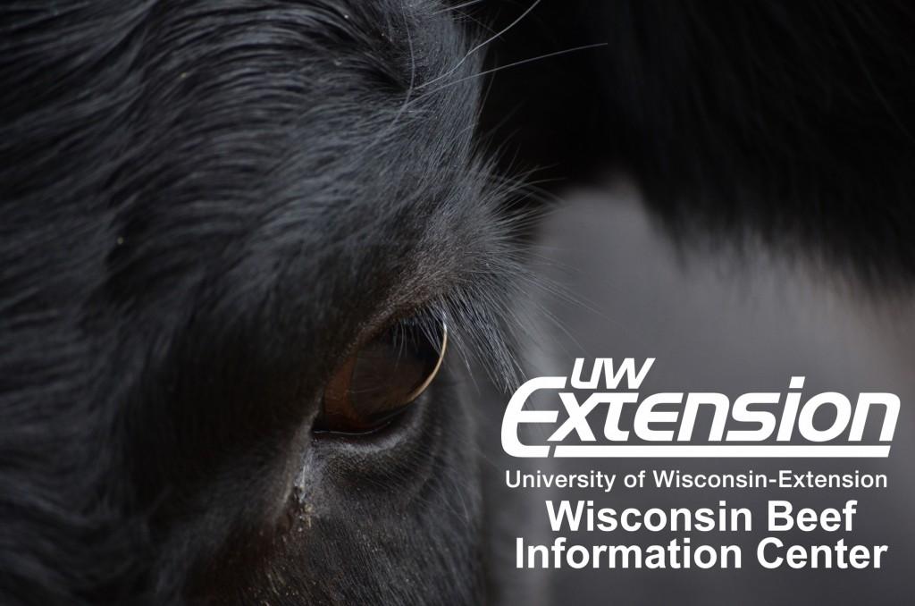 Wisconsin Beef Information Center
