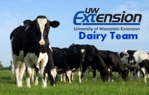 Dairy Team Logo