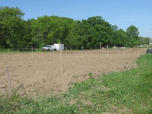 Waukesha County Community Gardens Picture of Community Gardens Plot