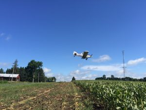 airplane-into-corn