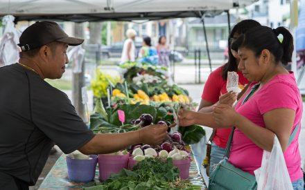 Strategies for farmers markets during COVID-19