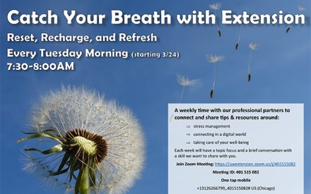 Catch Your Breath with Extension