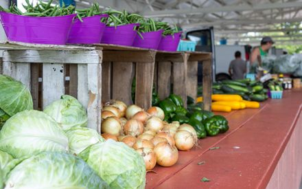 Tips for providing a safe shopping environment at farmers markets