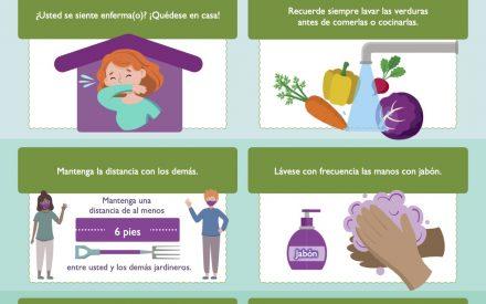 Las mejores prácticas para los JARDINEROS EN LOS JARDINES COMUNITARIOS durante la pandemia de COVID-19