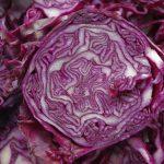purple cabbage cut open