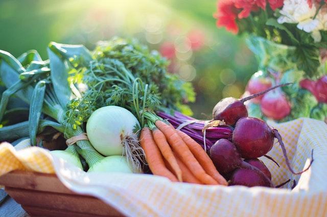 garden vegetables in a basket