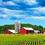Image of a farm behind the field with the blue sky
