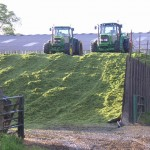2 green tractors on the winter feed