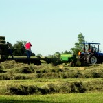 Gathering square hay bales in the field - blue tractor, green baler