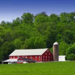 image of a farm with red buildings and a gray silo near a woods