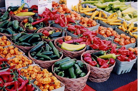 Market Wired | Get Your Farmers Market Wired With Ebt Dane County Community Food