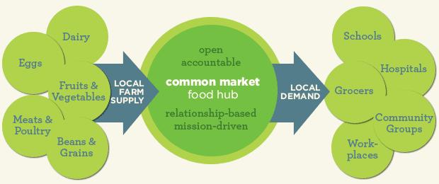 Common Market Infograph
