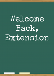 Welcome Back, Extension on a chalk board