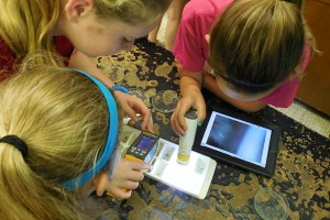Exploring river critters with digital microscope