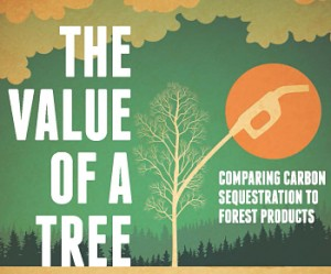 Value of a Tree Logo