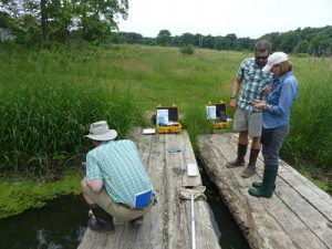 Upham Woods staff testing water quality on a bridge.