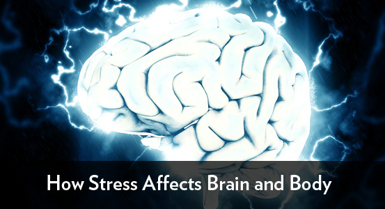 How Stress Affects Brain and Body