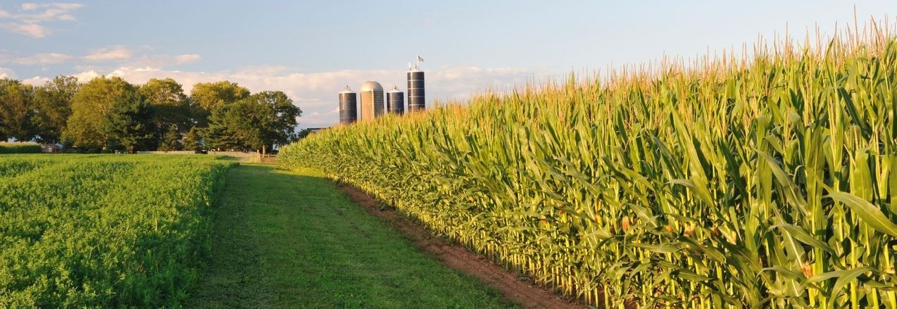 Washington Health Department >> Agronomy – Fond du Lac County Extension Agriculture