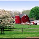 picture of a farm