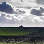 picture of farm field