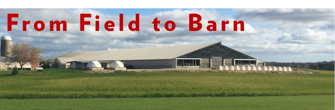 From Field to Barn Image