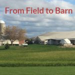 From Field to Barn