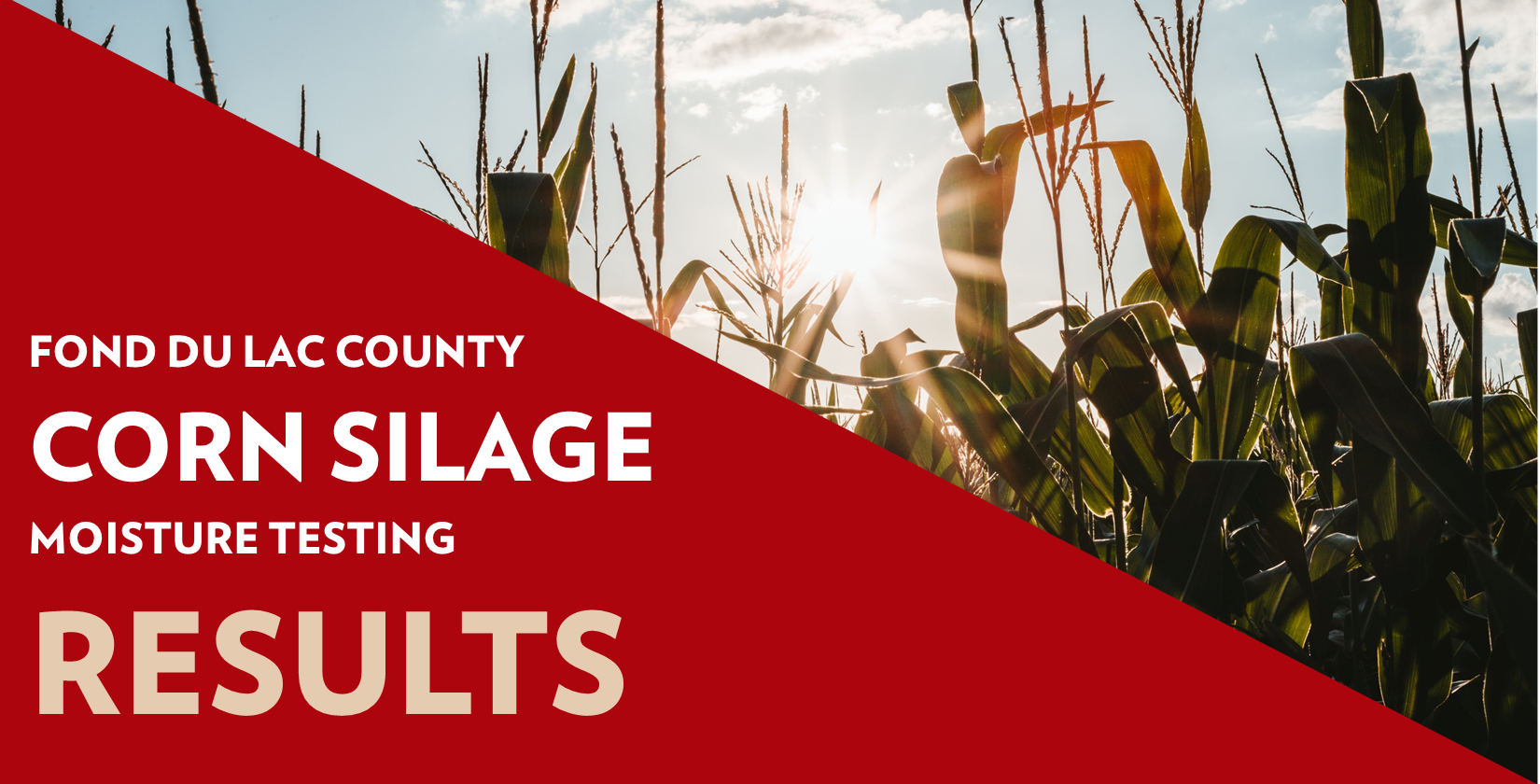 Fond du Lac County Corn Silage Moisture Testing Results