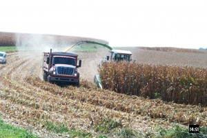 Picture 2. Harvesting of corn snaplage; Randy Shaver, UW-Madison