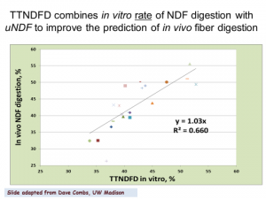 Figure 2. Comparison of TTNDFD with in vivo NDFD