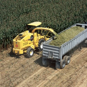 chopping corn silage FX58-010-01