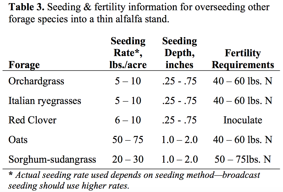 Seeding into an Existing Alfalfa Stand – Team Forage