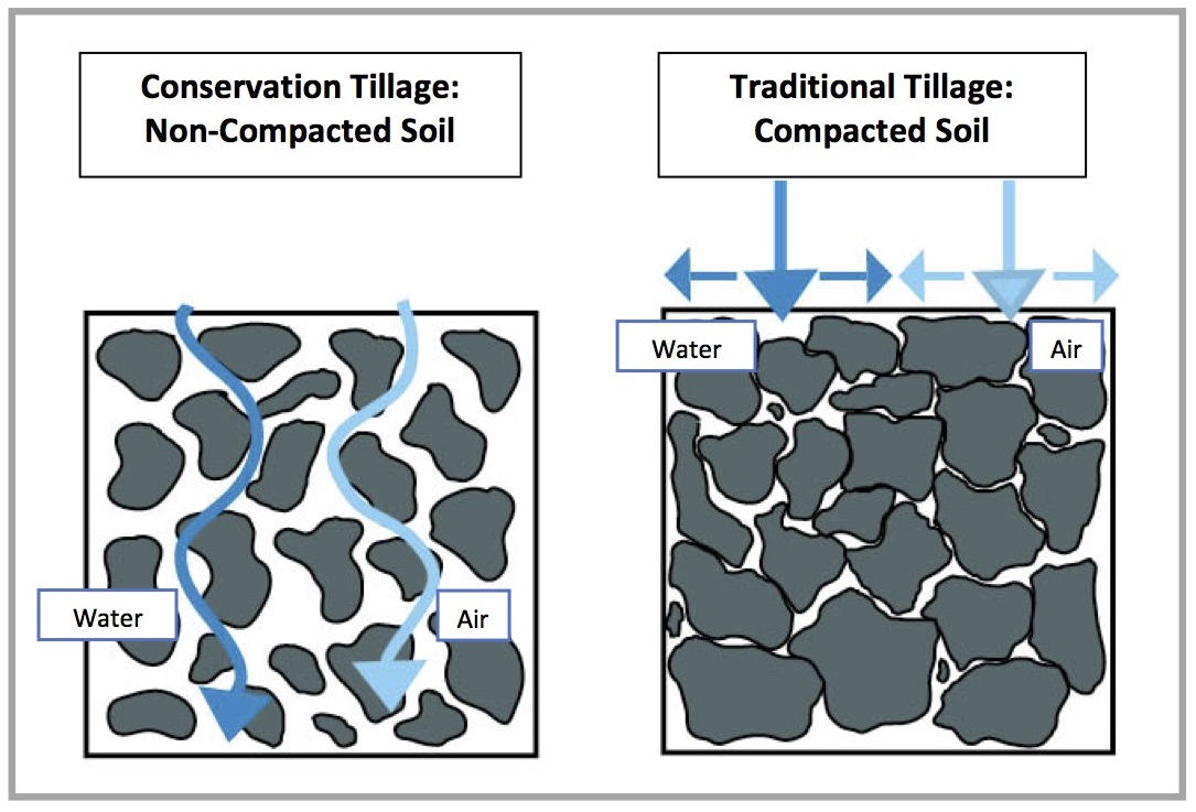 Minimal soil disturbance conservation tillage lower fox for Soil compaction