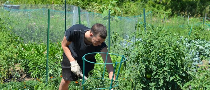 Supporting Safe & Sustainable Gardening