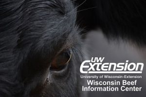 Go to Wisconsin Beef Information Center website