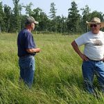 Randy and Mr. Fogerty standing in a field of crabgrass that is about hip height.
