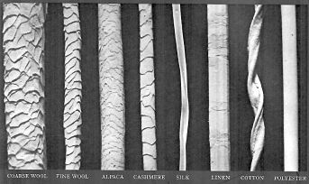 common fabric fiber types viewed under a microscope