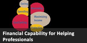 Financial Capability link
