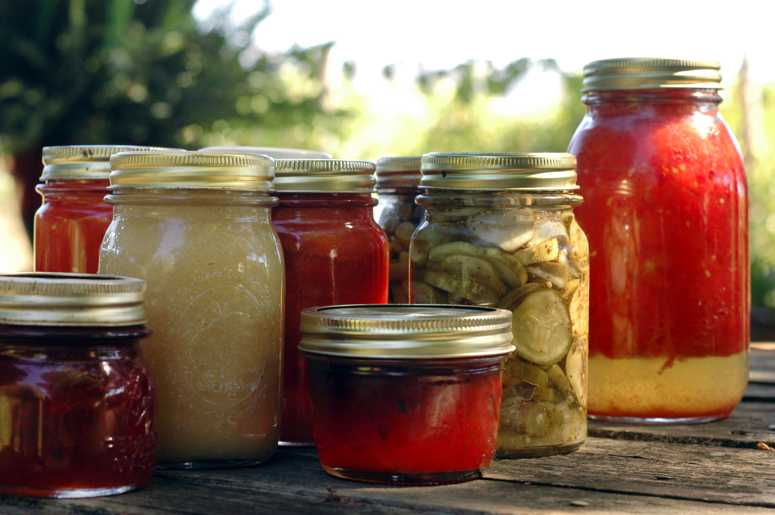 Canning, Preserving, Pickling and Dehydrating Food Rare 30 'Out of Print' cd