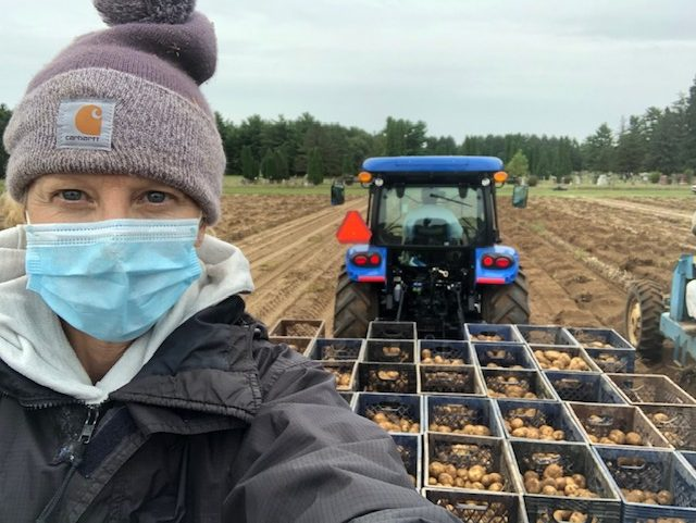 A woman wearing a protective face mask standing in front of a tractor that holds recently harvested potatoes.