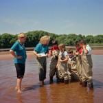 NGLVC-UWEX school estuary program