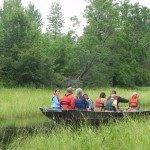 Boat trip to the Bad River-Kakagon wild rice beds (2)