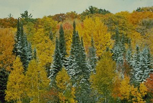 fall snow on landscape; Jeff Martin