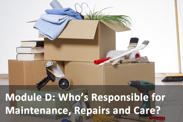 Module D: Who's Responsible for Maintenance, Repairs and Care?