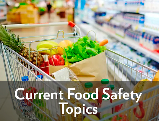 Current Food Safety Topics