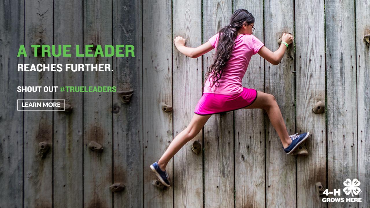 Adult Leadership