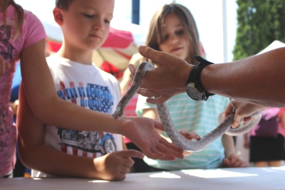 Children at outreach event with snake