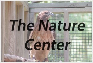 NatureCenter_HeadingPic1_opt_600px